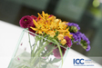 ICC_0115.jpg
